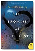 The Promise of Stardust: A Novel