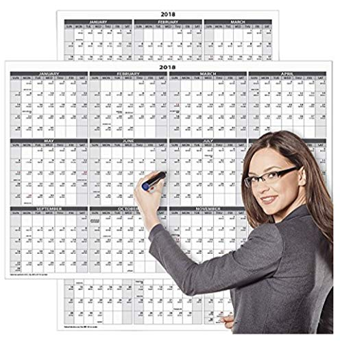 Delane Large 2019 Yearly Wet and Dry Erase Wall Calendar - 24 x 36 Inches - 2-Sided Reversible Vertical Horizontal - Mounting Tape Included (AWC-001) (White)