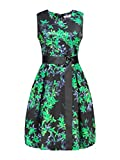 AIIT Womens Spring Floral Fit And Flare Dress With Adjust Sash Plus Size