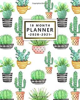 2019 Wall Calendar 13 x 19ins Cavallini Succulents//Cactus//Cacti