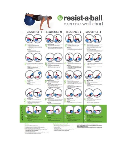 Resist A Ball Stability Exercise Ball Kit