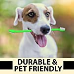 Dog Toothpaste and Toothbrush Set [REMOVES FOOD DEBRIS] Double Sided with Long Curved Handle [SUPER EASY CLEANING] - Best Soft Silicone Pet Toothbrush for Cats And Dogs [EXPANDABLE FINGER ENTRY] - Col 12