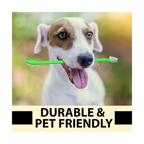 Dog Toothpaste and Toothbrush Set [REMOVES FOOD DEBRIS] Double Sided with Long Curved Handle [SUPER EASY CLEANING] - Best Soft Silicone Pet Toothbrush for Cats And Dogs [EXPANDABLE FINGER ENTRY] - Col 4
