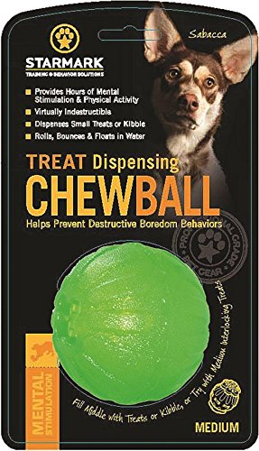 Treat Dispensing Chew Ball, Medium - Treat Dispensing Chew Toy