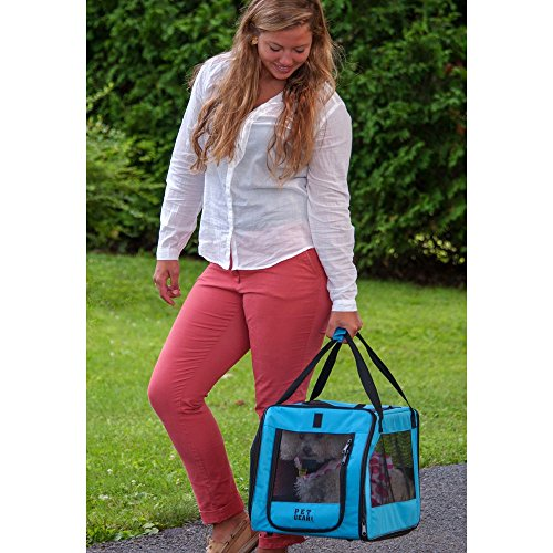 Pet-Gear-Signature-Pet-Car-Seat-Carrier-for-cats-and-dogs-up-to-20-pounds-Aqua