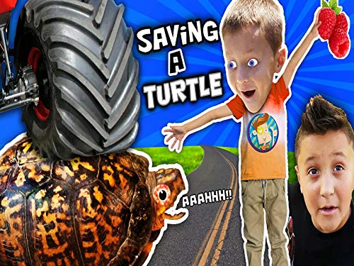 We Saved An Injured Turtle! -