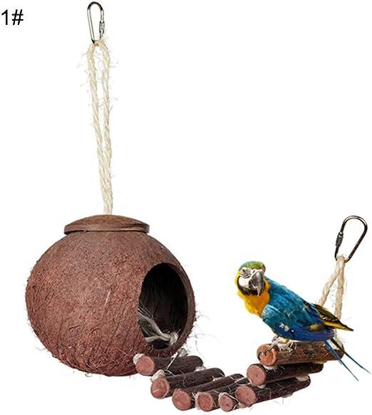 Whiie891203 Juguete para Loros de pájaros, Concha de Coco Natural, alimento para pájaros, Perros, Juguete con Escalera para periquitos, cacatúas, conuras, macacos, Loros, Pinches- 1#: Amazon.es: Productos para mascotas