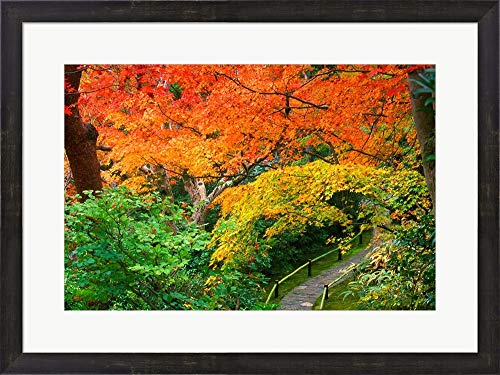 Rob Okochi Sanso Kyoto Japan - Okochi Sanso, Kyoto, Japan by Rob Tilley/Danita Delimont Framed Art Print Wall Picture, Espresso Brown Frame, 28 x 21 inches