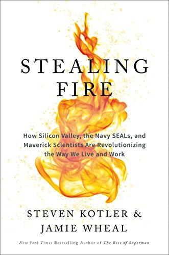Download PDF Stealing Fire - How Silicon Valley, the Navy SEALs, and Maverick Scientists Are Revolutionizing the Way We Live and Work