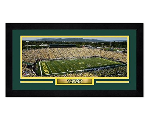 Autzen Stadium University of Oregon Ducks 7x13 Framed Sports Photo Stadium Ncaa Photo Mint