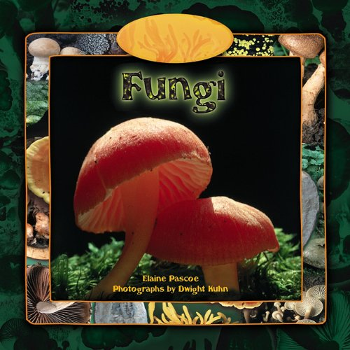 Read Online Fungi (Tony Stead Nonfiction Independent Reading Collections) PDF