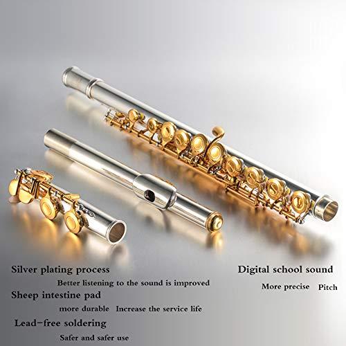 QWEYA Dos Colores de reproducción Profesional Flauta 16Closed Agujero C Flauta con Estuche de Ajuste Varilla paño Guantes de Grasa: Amazon.es: Hogar
