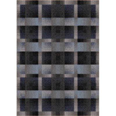 (Modern Times Aura Charcoal Rug Rug Size: 10'9