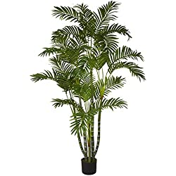 Chapman Greens [5 Foot] Tropical Artificial Areca Palm Tree Faux Indoor Floor Plant for Home Office Decor