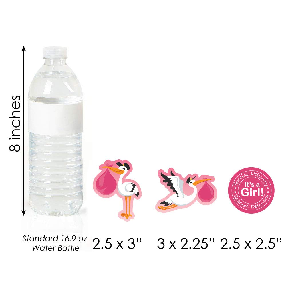 Dessert Cupcake Toppers Girl Special Delivery Its A Girl Stork Baby Shower Clear Treat Picks Set of 24