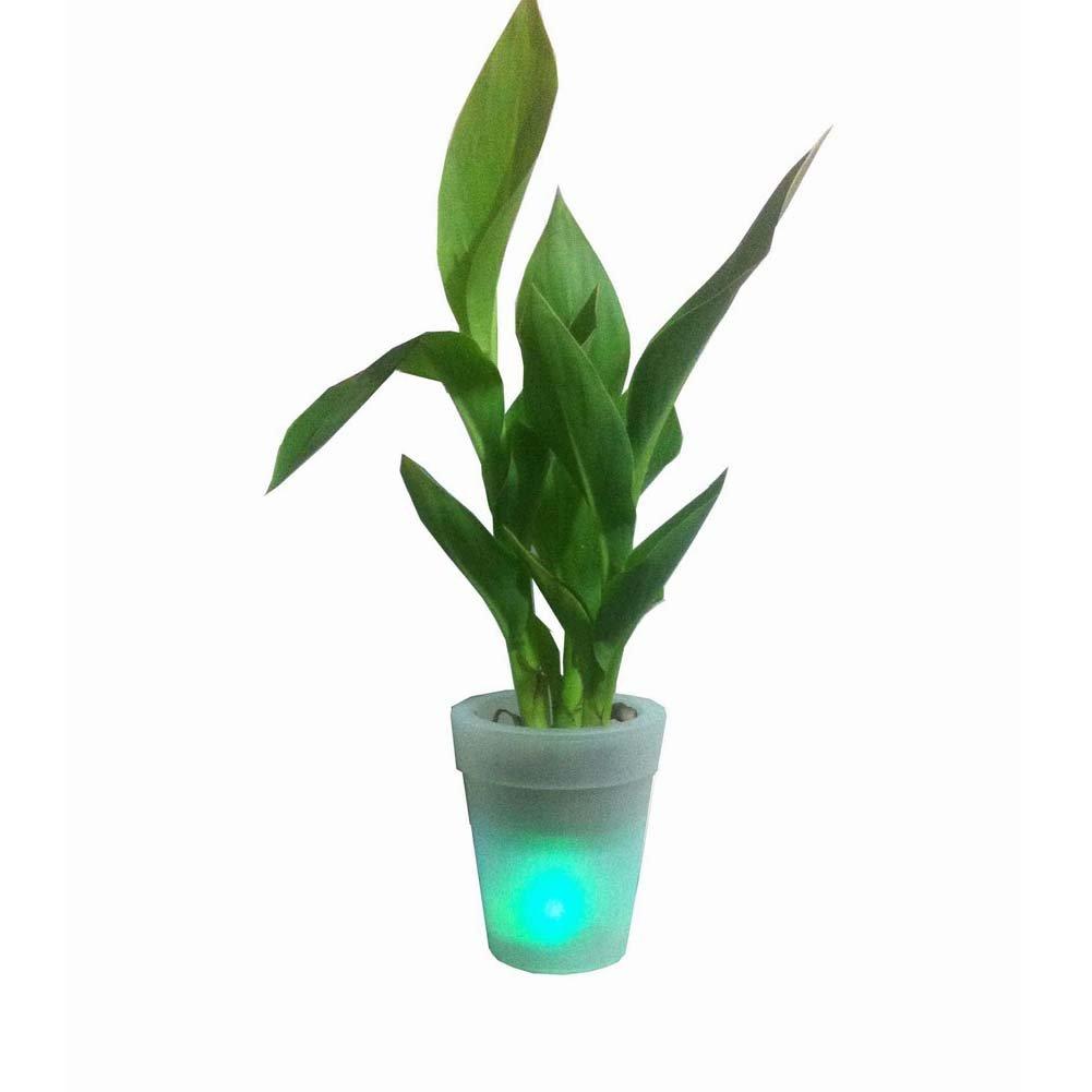 Solar Flower Pot Lights Led Planter Vase Lamp Garden Outdoor Yard