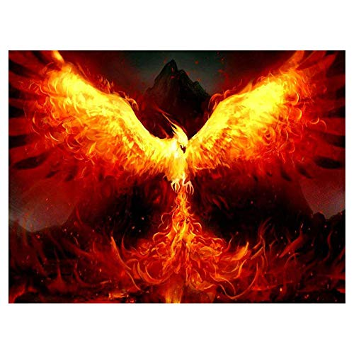 LIPHISFUN Diamond Painting Kits for Adults Full Drill Square Resin Rhinestone Embroidery Unfinished Cross Stitch Home Decor Gift Fire Phoenix 30x40cm