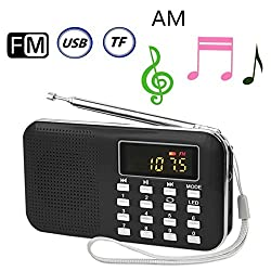 GES NET Mini Digital AM FM LCD Radio Speaker, Micro SD/TF USB Disk Speaker MP3 Music Player Stereo, Portable Pocket Novelty Radio Receiver, Handheld Radio (black)