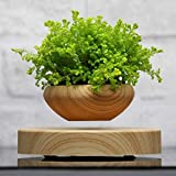 Ganeep Magnetic Suspended Potted Plant Wood Grain Round LED Light Levitating Rotating Indoor Air Plant Pot Home Office Decor No Plant