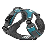 Embark Adventure Dog Harness, Easy On and Off with Front and Back Leash Attachment Points & Control Handle - No Pull Training, Size Adjustable and No Choke (Large - Teal Blue)