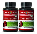 Product review for anti-aging naturals - KIDNEY SUPPORT 700 - cinnamon supplement - 2 Bottles (120 Capsules)
