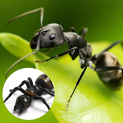 LovesTown Big Fake Ants Simulated Insect Prank Toy Ants Toy Figure 1.6\