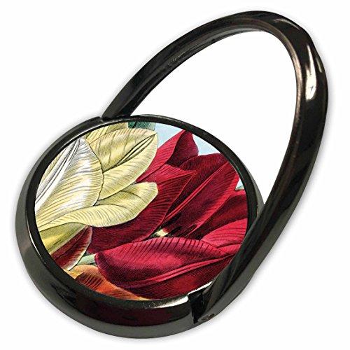 3dRose PS Vintage - Vintage Tulip Flowers - Phone Ring (phr_203816_1)