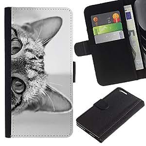 A-type (Cat Eyes Black White Kitten Cute Pet) Colorida Impresión Funda Cuero Monedero Caja Bolsa Cubierta Caja Piel Card Slots Para Apple (5.5 inches!!!) iPhone 6+ Plus / 6S+ Plus