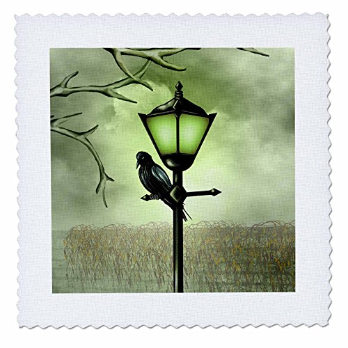 Dreams Lamp Mist Of (3dRose Dream Essence Designs-Animals - Crow sitting on Street Lamp - 10x10 inch quilt square (qs_239254_1))
