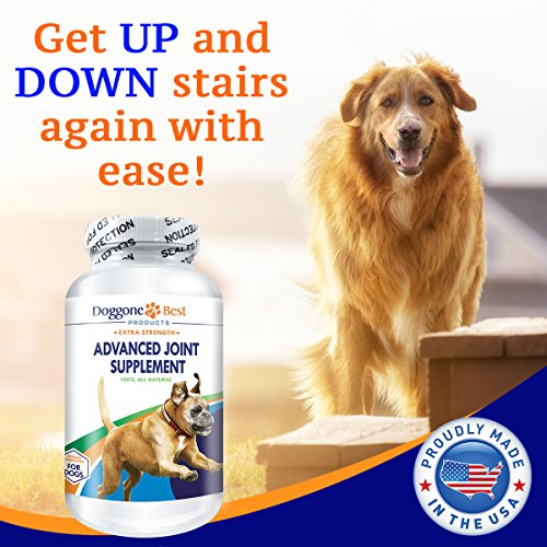 Image of Glucosamine for Dogs - All Natural Glucosamine, Chondroitin, MSM & Tart Cherry Is The Best Joint Supplement To Relieve Hip & Joint Pain - Tasty Chewable Tablets Your Dog Will Love - Made in the USA