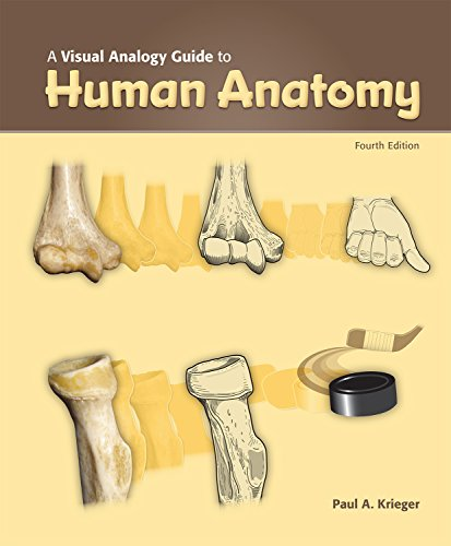 A Visual Analogy Guide to Human Anatomy, 4e