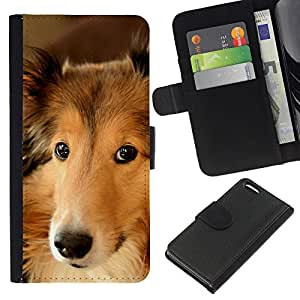 eJoy---La carpeta del tirón la caja de cuero de alta calidad de la PU Caso protector - Apple iPhone 5C - --Border Collie Smart Dog Canine Pet