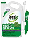 Roundup for Lawns RTU Wand (Southern) - 1 Gallon