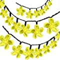 Solar LED String Lights, 26.5ft 50 LEDs 8 Modes Outdoor Flower String Light Patio Fairy Blossom Lighting for Christmas Trees Garden Wedding Party and Holiday Decoration by ihoven