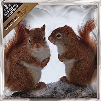squirrel christmas cards