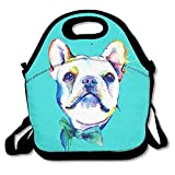Funny Watercolor French Bulldogs Mint Green Lunch Bags Insulated Travel Picnic Lunch Box Tote Handbag With Shoulder Strap For Women Teens Girls Kids Adults