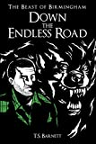 Down the Endless Road (The Beast of Birmingham Book 3)