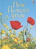 How Flowers Grow (Usborne Beginners, Level 1)