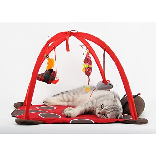 Cat Playful Bed Exercise Game Tent Funny Cat Toy cheap