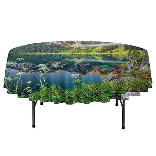 DouglasHill Nature Leakproof Polyester Round Tablecloth Misty Summer Morning on Austrian Alps Mountain Range with Lake Wanderlust Landscape Outdoor and Indoor use D35 Inch Green Blue
