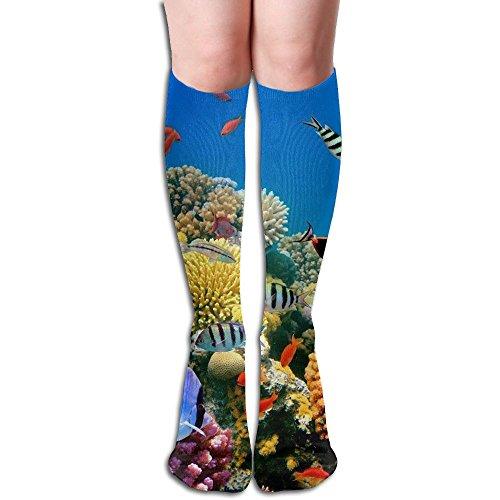 Unisex Tropical Fish On A Coral Reef Elastic Long Socks Soccer Socks Tube Thigh-High Leg Warmers Knee High Socks Length 19.69 Inch