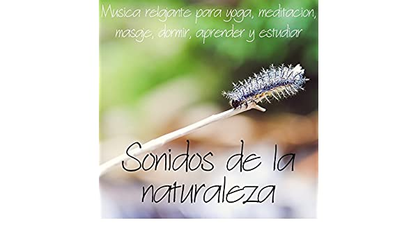 Ondas sonoras by Sonidos de la naturaleza de relajacion on Amazon Music - Amazon.com