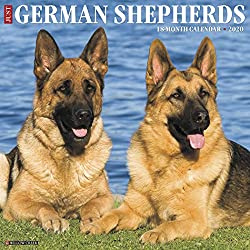 Just German Shepherds 2020 Wall Calendar (Dog Breed Calendar)