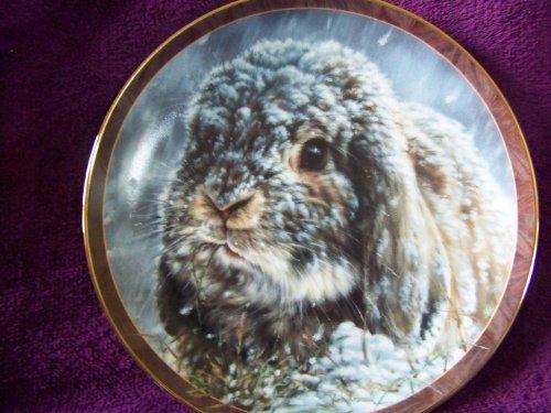 Exchange Collectible Plates Bradford - 1997 Bradford Exchange Bunny Tales Collectible Plate