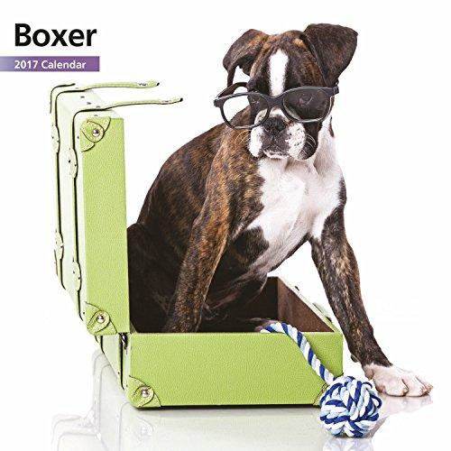 Free Magnet & Steel 2017 Boxer Puppies Calendar, Mini Calendar