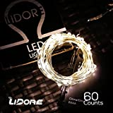 LIDORE 20.7 Ft Long Micro LED 60 Warm White String Lights with 2 Modes(ON&TIMER). Waterproof battery box. 6AA Battery Operated. Suitable for indoor and outdoor(warm white)