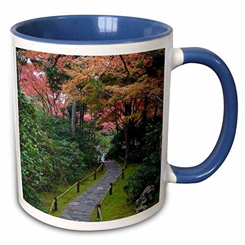 Rob Okochi Sanso Kyoto Japan - 3dRose Danita Delimont - Gardens - Japan, Kyoto, Arashiyama, Okochi Sanso Villa Garden - AS15 RTI0772 - Rob Tilley - 15oz Two-Tone Blue Mug (mug_132751_11)