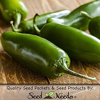 Package of 100 Seeds, Tam Jalapeno Hot Pepper (Capsicum annuum) Non-GMO Seeds by Seed Needs