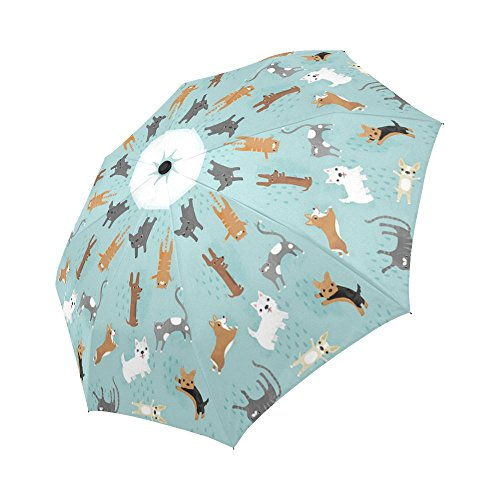 Raining Cats and Dogs Funny Auto Travel Umbrella Men and Woman Folding Umbrella Best funny gift