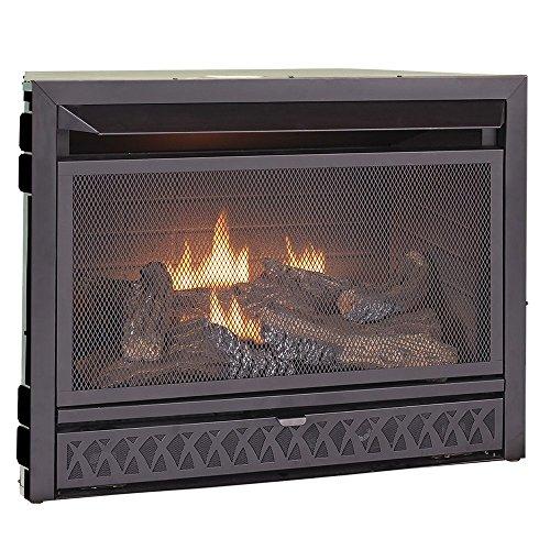 Procom Fissure-Free Dual Fuel Fireplace Insert, Model FBNSD28T